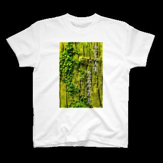 こみゐ本舗-レンズキャップをデコる人のあたしの人生、やぶれかぶれ!! T-shirts