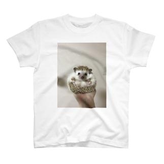 手乗りハリネズミのもぐらくん T-shirts