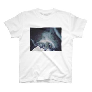 klp T-shirts