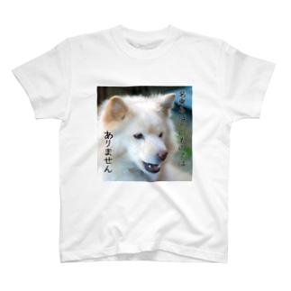 名乗るほどのものではありません T-shirts