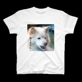 こみゐ本舗-レンズキャップをデコる人の名乗るほどのものではありません T-shirts