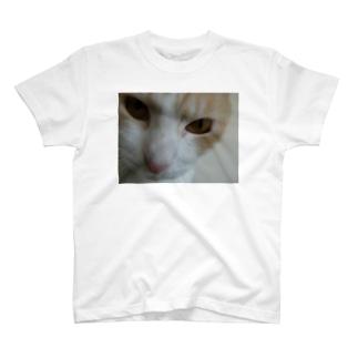 GOMEZフェイス T-shirts
