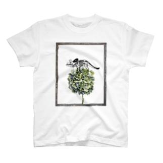 トリケラトプス骨格と紫陽花 T-shirts