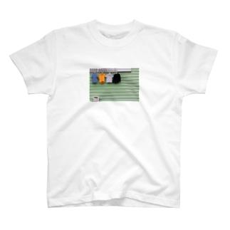 シャツポロシャツ T-shirts