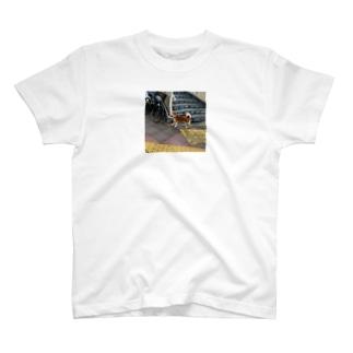 歩道橋の下のワンコロ T-shirts