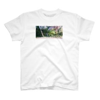 連日 フィリピン 豪華ショー T-shirts