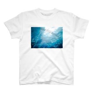 海中 T-shirts