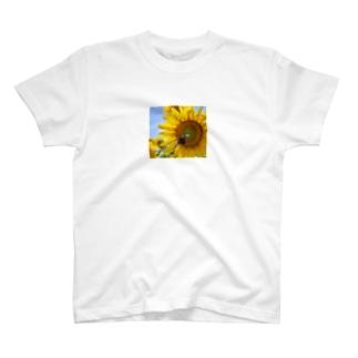 ヒマワリとクマバチ T-shirts