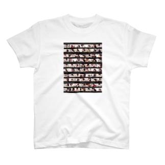 TLM T-shirts