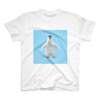 ペンギンの赤ちゃん T-shirts