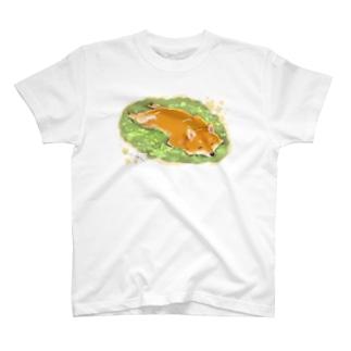 春を浴びる芝犬 T-shirts