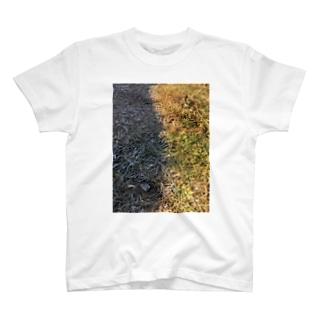 霜と日向T T-shirts
