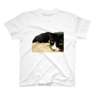 じと目のお猫様 T-shirts