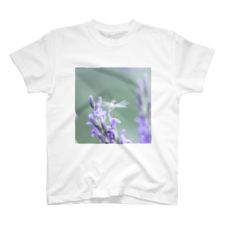 Angel of Lavender (170702) T-shirts