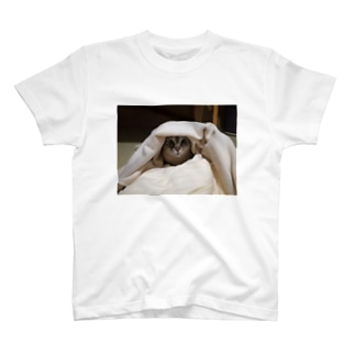 タオルケットの中のすみ T-shirts