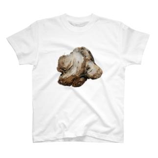 流木 T-shirts