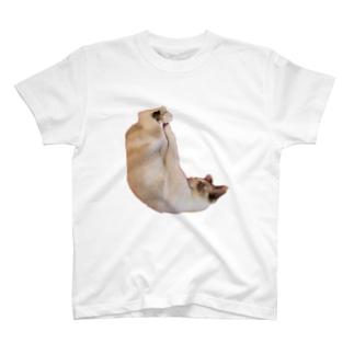 しろみちゃんの寝相が変 T-shirts