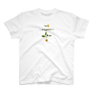 さしみの飾り T-shirts