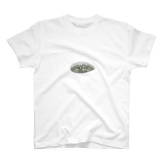 ◔24 T-shirts