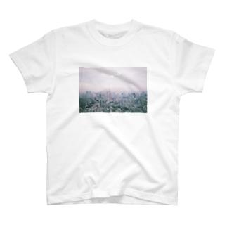 とうきょう T-shirts