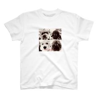 4匹の湘南ボーイ T-shirts