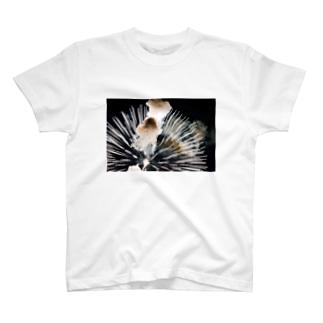 花火の爆発するところ T-shirts