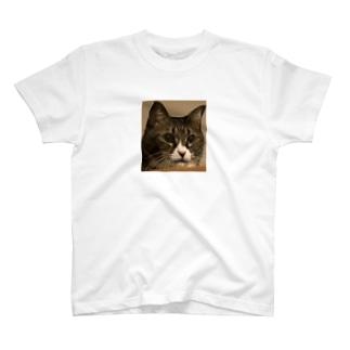 猫のゴロ君   T-shirts
