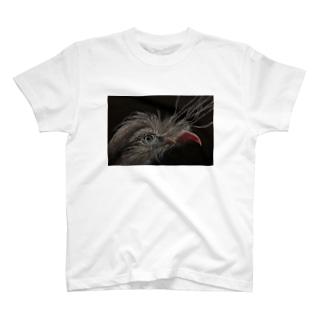 アカノガンモドキ T-shirts