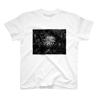 A Life Once Bloomed T-shirts