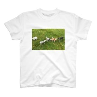 わんわんパーティ T-shirts