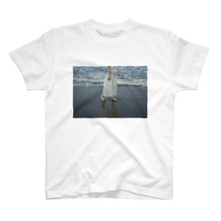adanami T-shirts