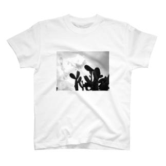 Hoja T-shirts