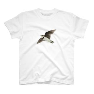 ショウドウツバメのグッズ T-shirts