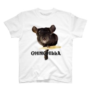 chinchilla T-shirts