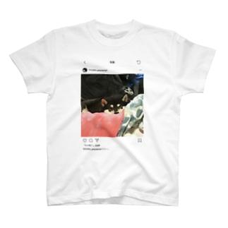 Himeko Tshirt 【SNSpic⑫】 T-shirts