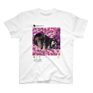 Himeko Tshirt 【SNSpic⑬】 T-shirts