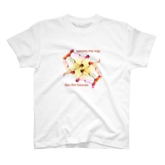 liketheheven2 T-shirts