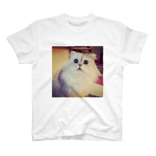 ハル T-shirts