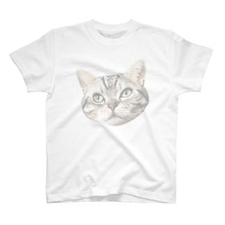 猫Tシャツ T-shirts