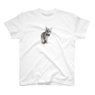 ウチノコイチバン T-shirts