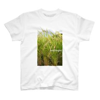 刈り入れまでもうすぐ T-shirts