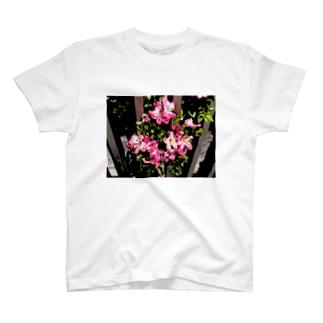 私はここよ! T-shirts