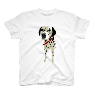 Walk with Dalmatian T-shirts