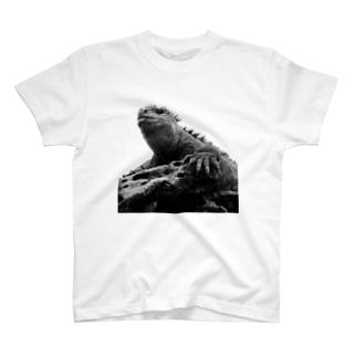 ガラパゴスイグアナ T-shirts