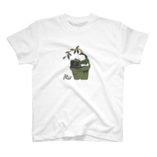 部屋の隅のガジュマル(淡色用) T-shirts