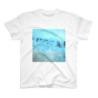 """鯨窓机(第二極地観測所)の""""ストームグラス航空402便"""" T-shirts"""