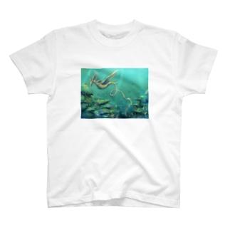 タツノオトシゴドラゴン T-shirts