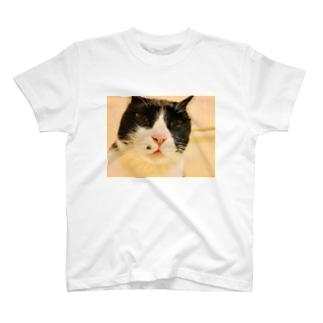 他人の家の猫シャツ T-shirts