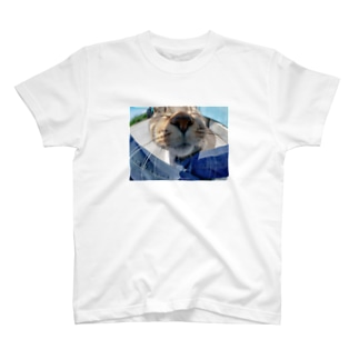 魚眼越し猫ちゃん T-shirts
