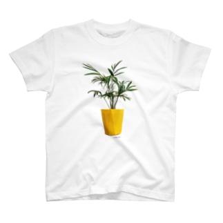 植物シリーズ(テーブルヤシ) T-shirts